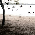 Tallest-Man-Theres-No-Leaving-Now